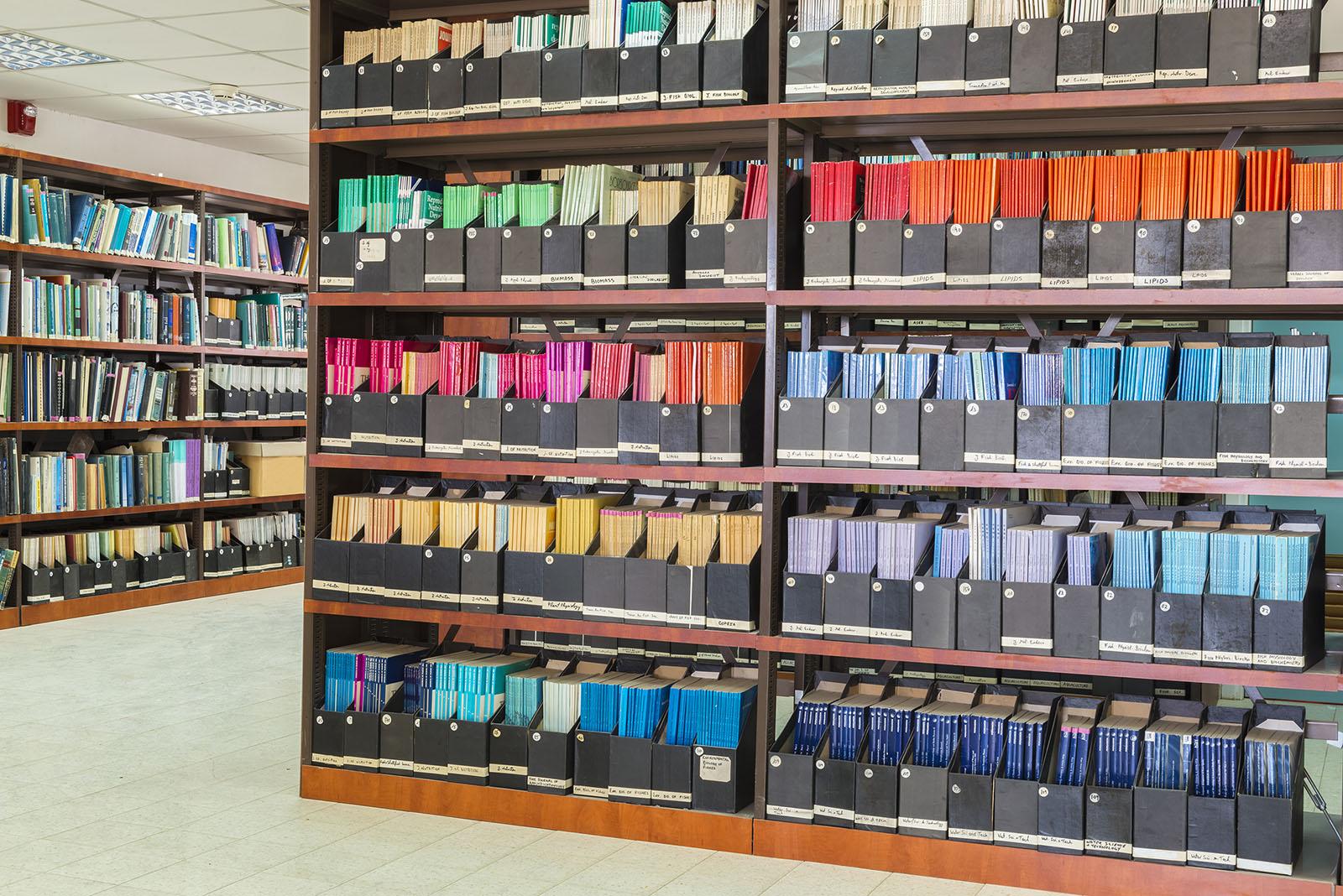 colored-books-on-shelf