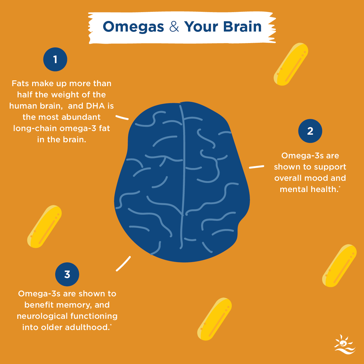 Omegas & your brain